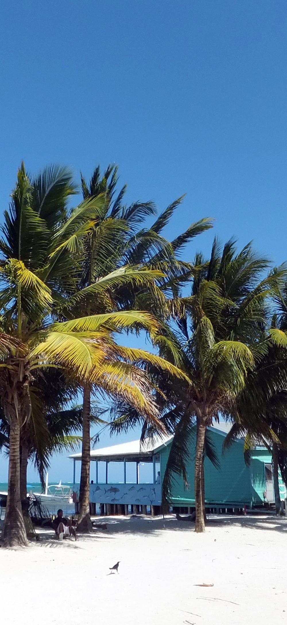 A Photo Blog of Belize