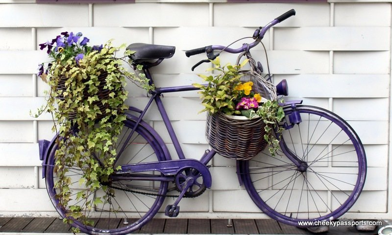 A bicycle with flower baskets standing by a wall - Visit Zagreb