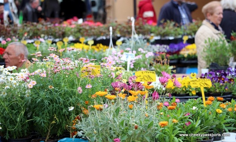 different flowers and plants at the the flower market on our visit zagreb tour