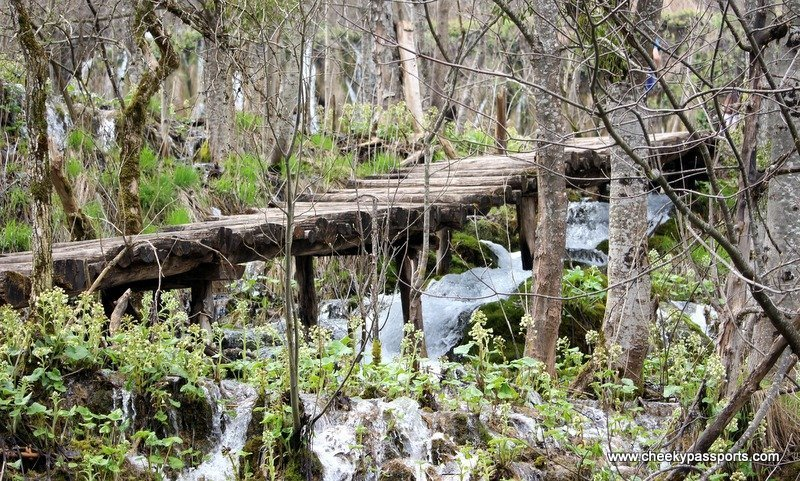 a wooden walkway in the Plitvice lakes National Park