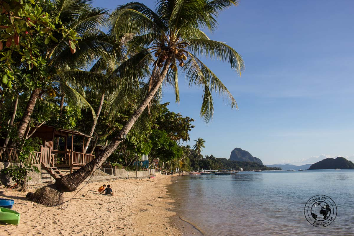El Nido Itinerary - view from corong-corong beach showing a palm