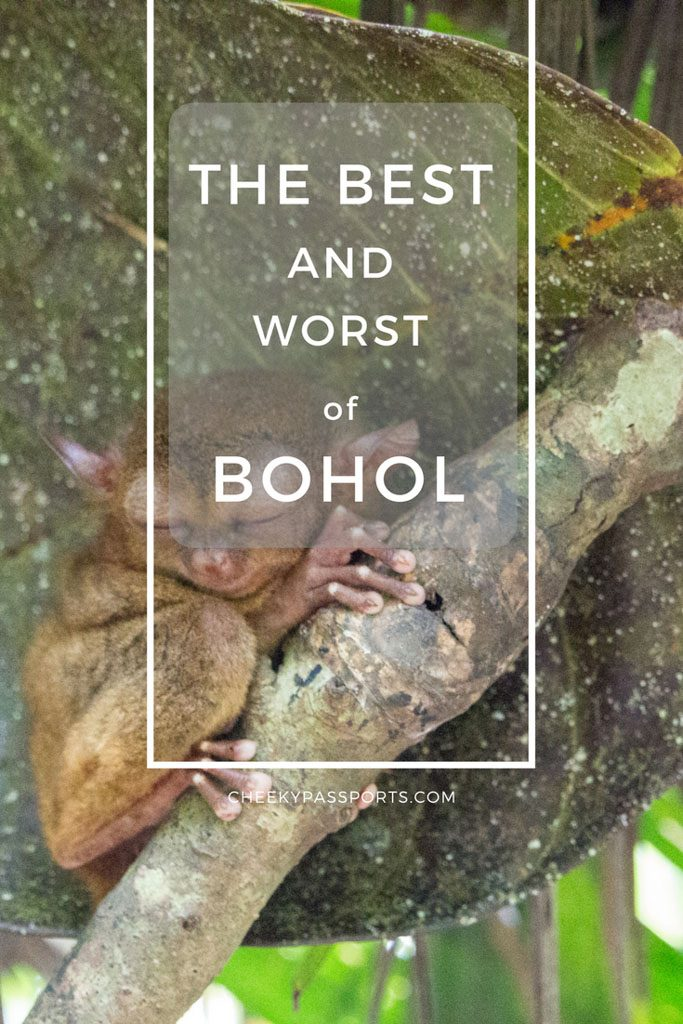 Bohol is fast becoming a tourist hotspot in the Philippines. With its Chocolate Hills, cute Tarsiers and its rural interior, the island has a lot to offer to those who are looking for something other than beaches. Beaches of course are never too far. Alona and Dumaluan being only half an hour's trike ride away.