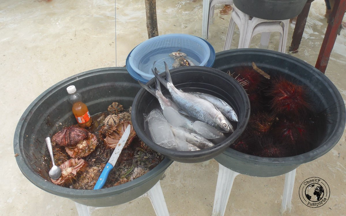 a selection of fish and sea food offered on the sand dune of Virgin island panglao - Why we won't recommend Island hopping in Panglao - traveling to the Philippines tips