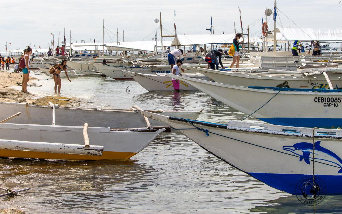 Boat confusion in Balicasag island - Why we won't recommend the Panglao island hopping tour