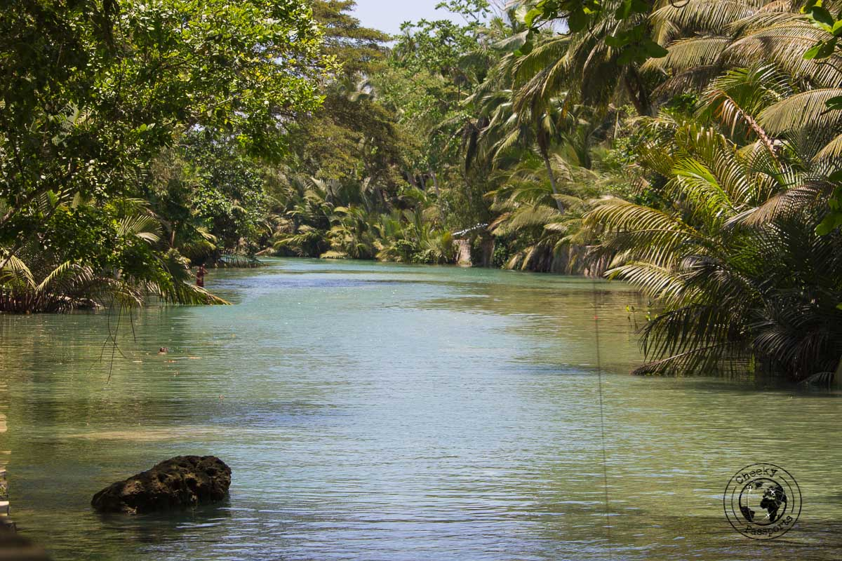 the river at the end of the Kawasan falls in Moalboal