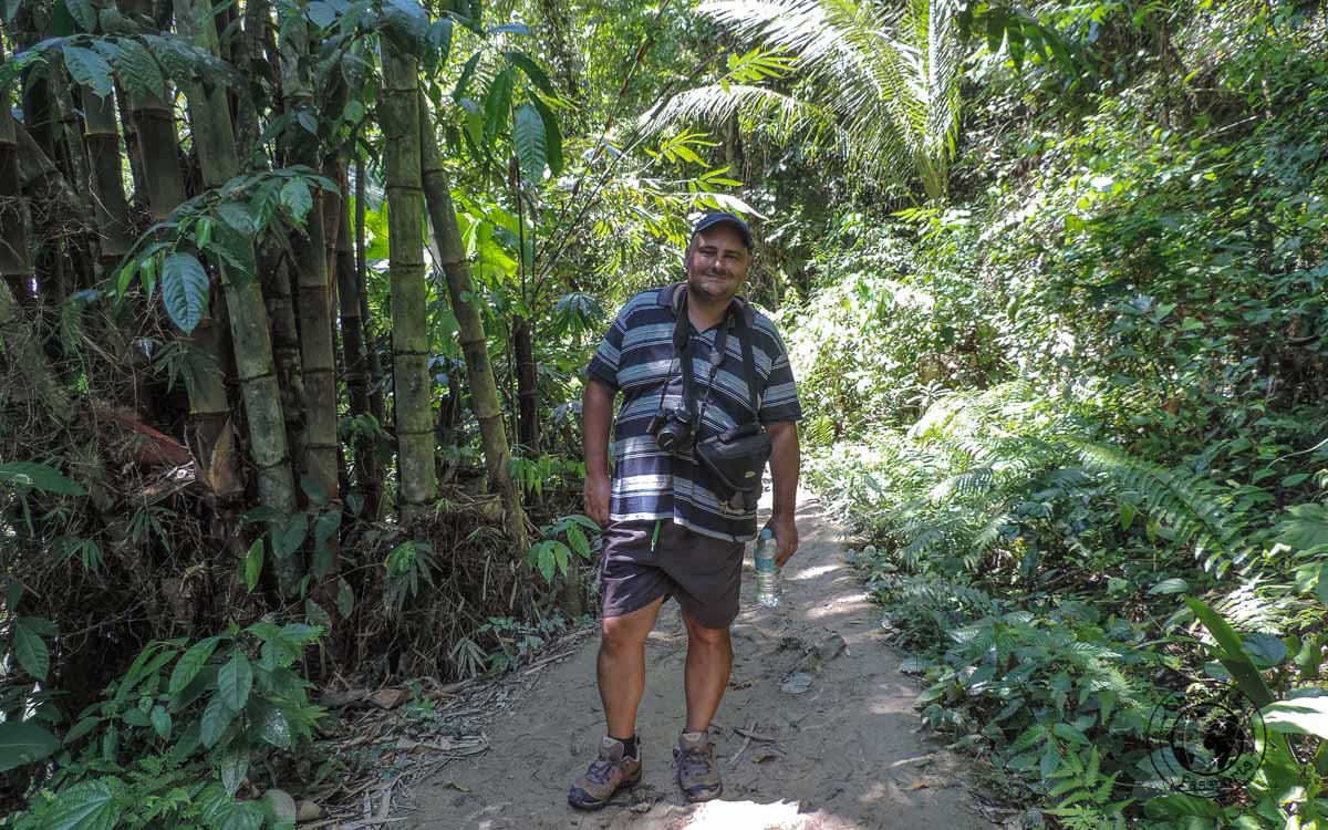 Nikki trekking along in the forest - Philippines travel tips