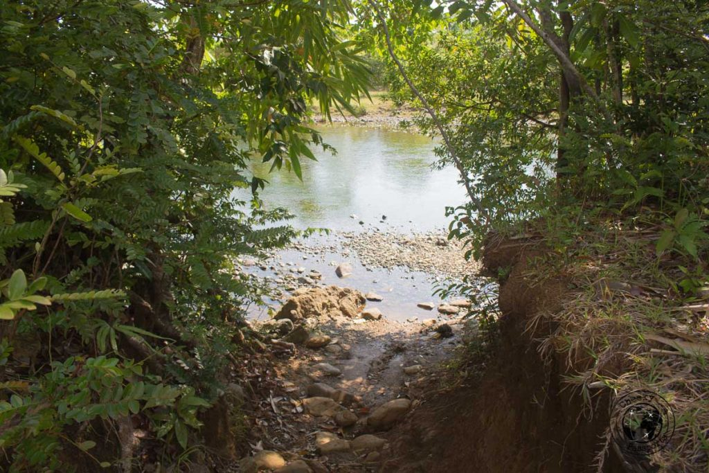 Nature walks in Sibuyan