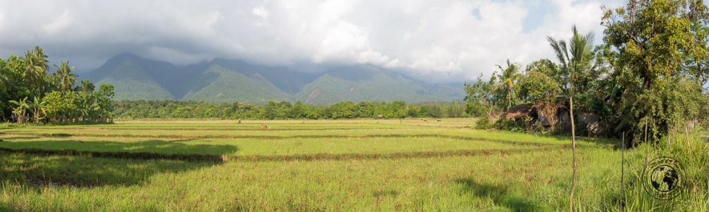 the planes of Sibuyan, protected by the mountain behind
