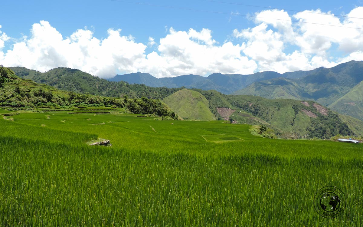 The beautiful scenery at Buscalan - How to get to Buscalan
