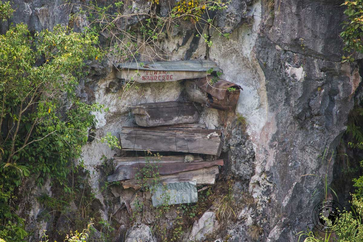 Coffins on a cliff face in Sagada