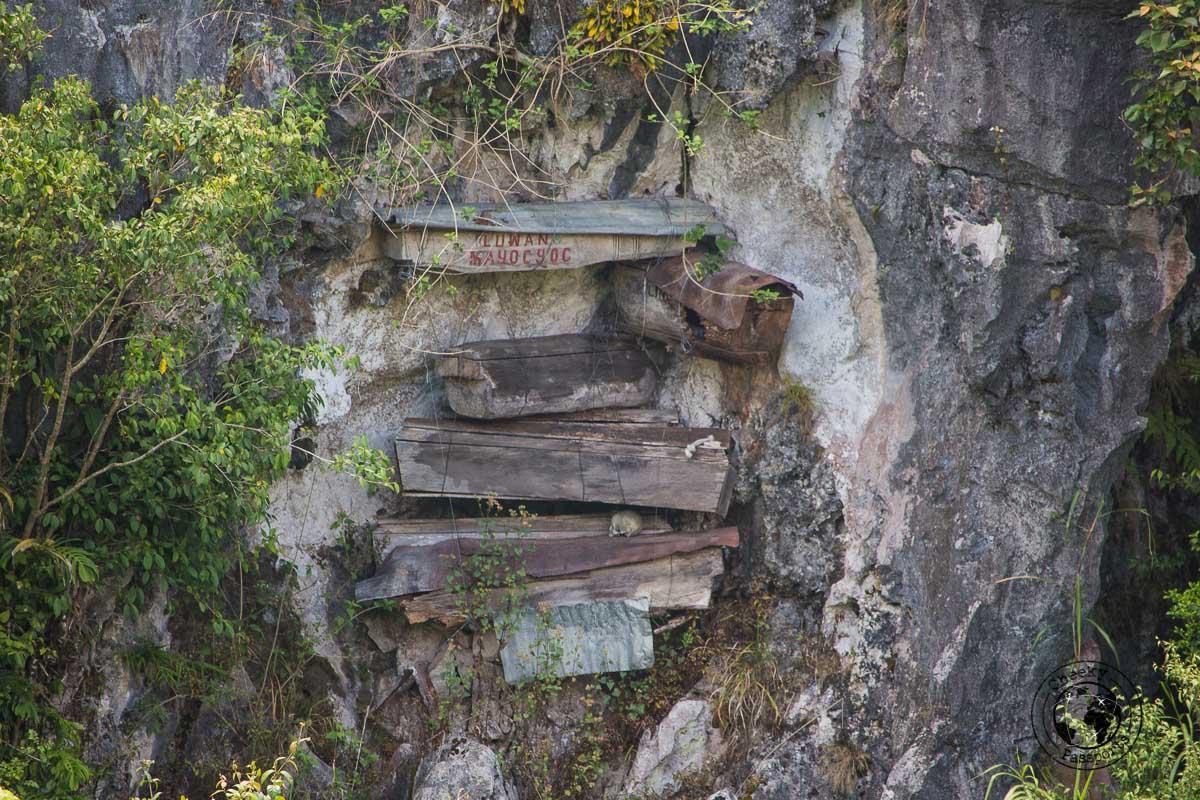 Coffins on a cliff face in Sagada - Sagada tourist spots