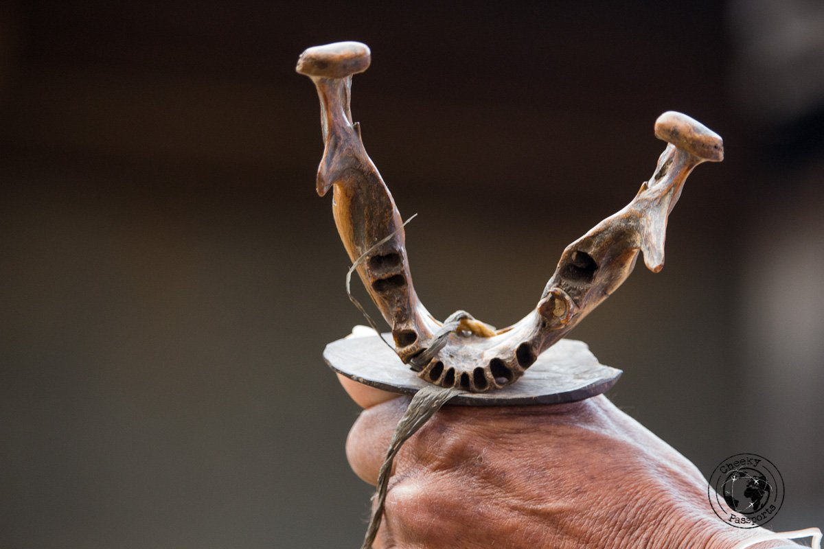 Human jaws, previously owned by Kalinga victims, now used to decorate the festival gongs in Buscalan