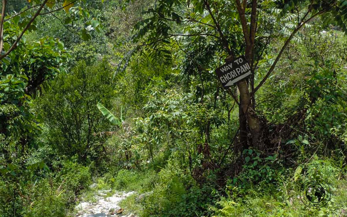 Way to Ghoripani at the Poon hill trek, Pokhara