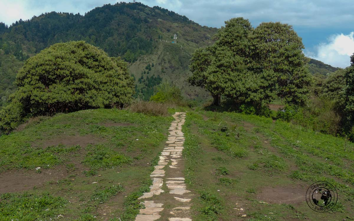 top of the hill - Poon hill trek