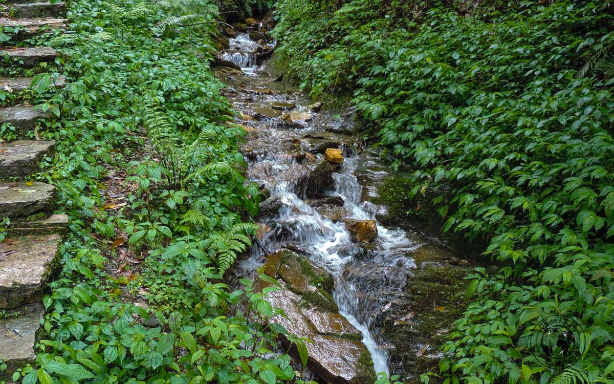 a river at the Poon hill trek, Pokhara