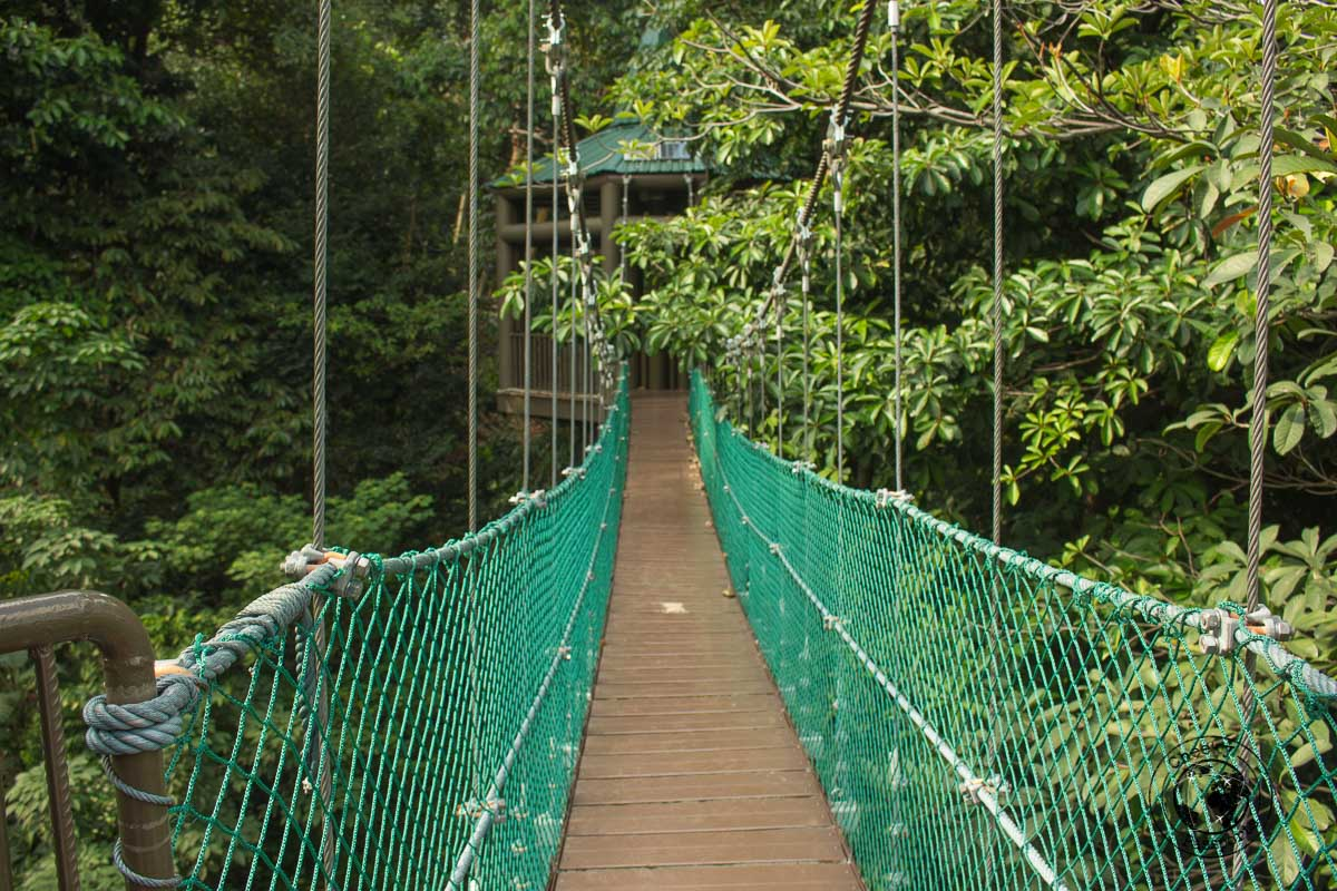 canopy walk - Top tourist spots in Kuala Lumpur