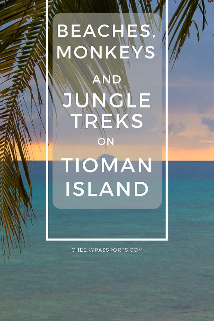 Beaches, Monkeys and Jungle treks on Tioman Island - Pulau Tioman - A Cheeky Passports Special (2)