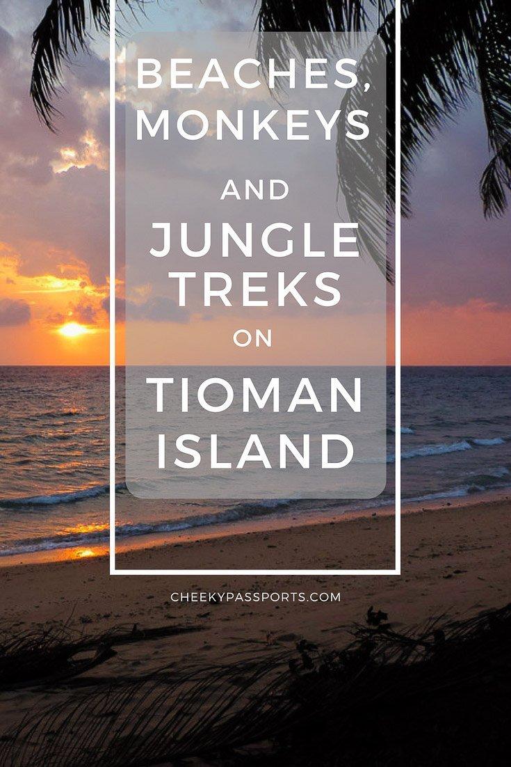 Beaches, Monkeys and Jungle treks on Tioman Island - Pulau Tioman - A Cheeky Passports Special