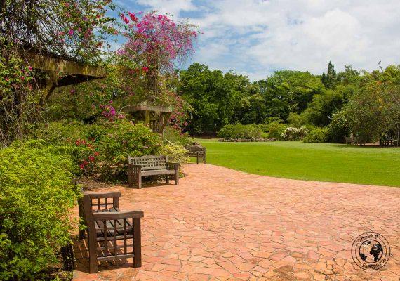 Botanic gardens path - 3 days in singapore