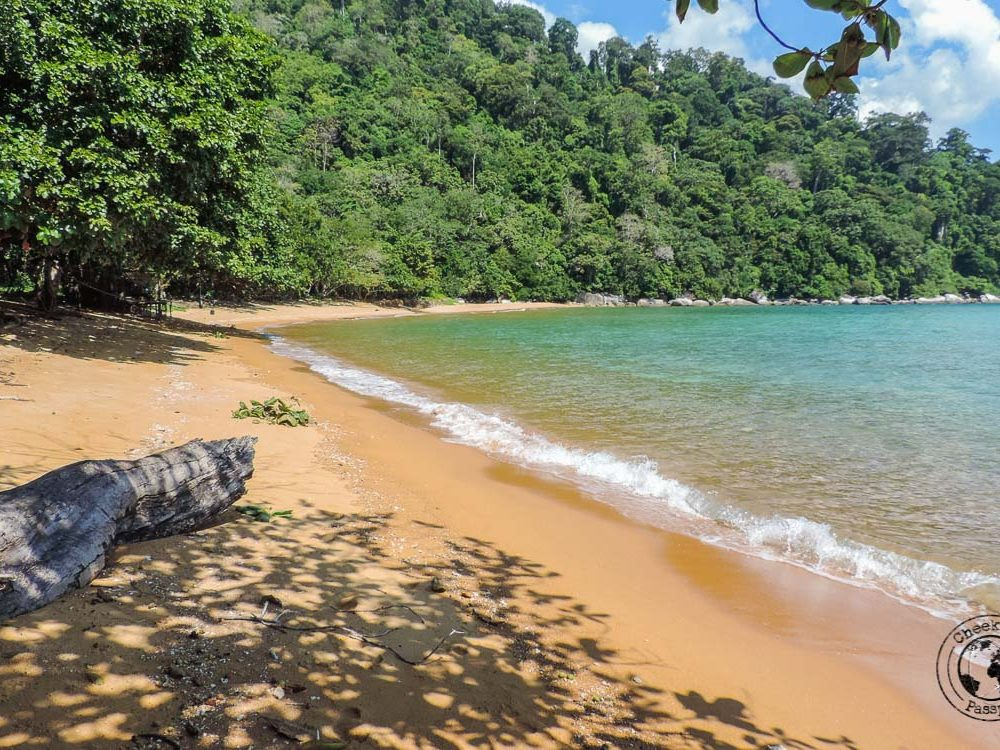 Beaches, Monkeys and Jungle treks on Tioman Island