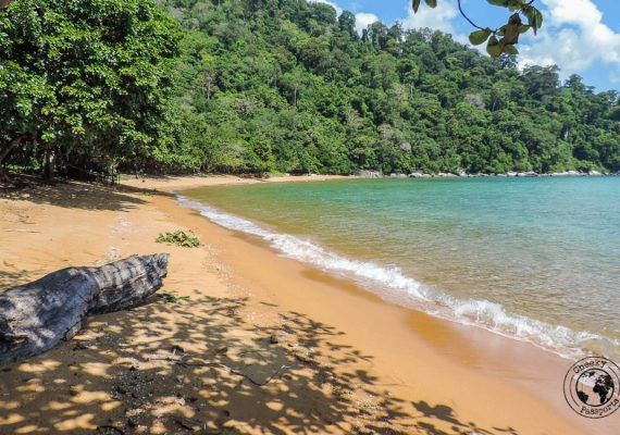 Hiking around Tioman - - Beaches, Monkeys and Jungle treks on Tioman Island - Pulau Tioman