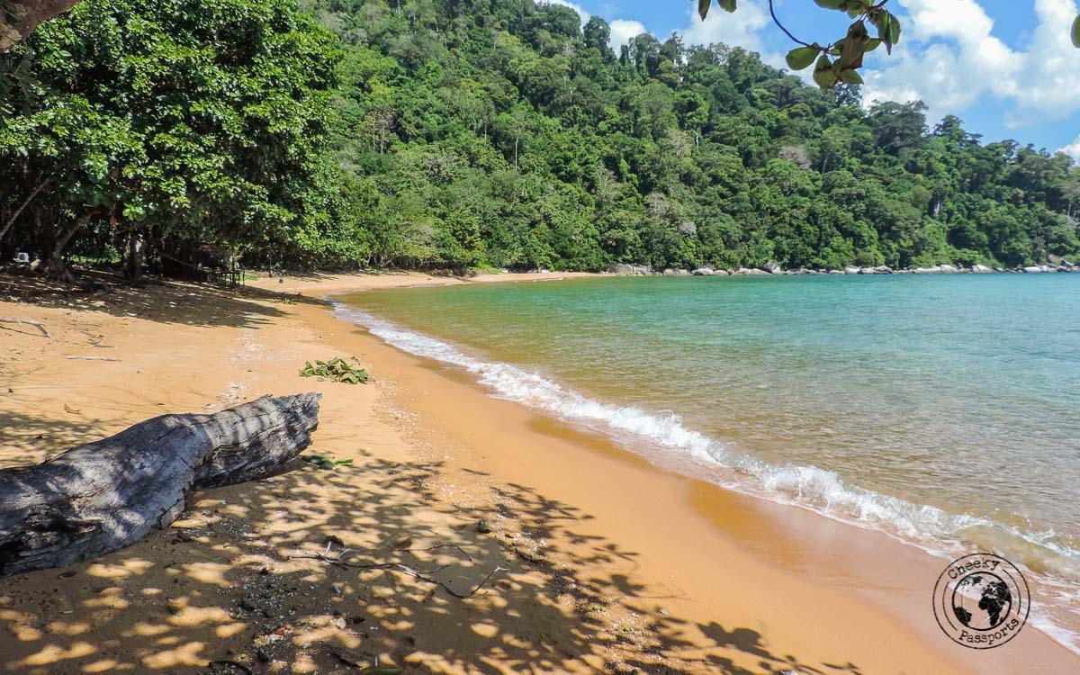 Hiking around Tioman, near Monkey beach Tioman - Beaches, Monkeys and Jungle treks on Tioman Island - Pulau Tioman
