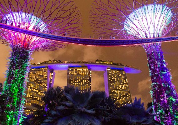 Gardens By the Bay - attractions around marina bay