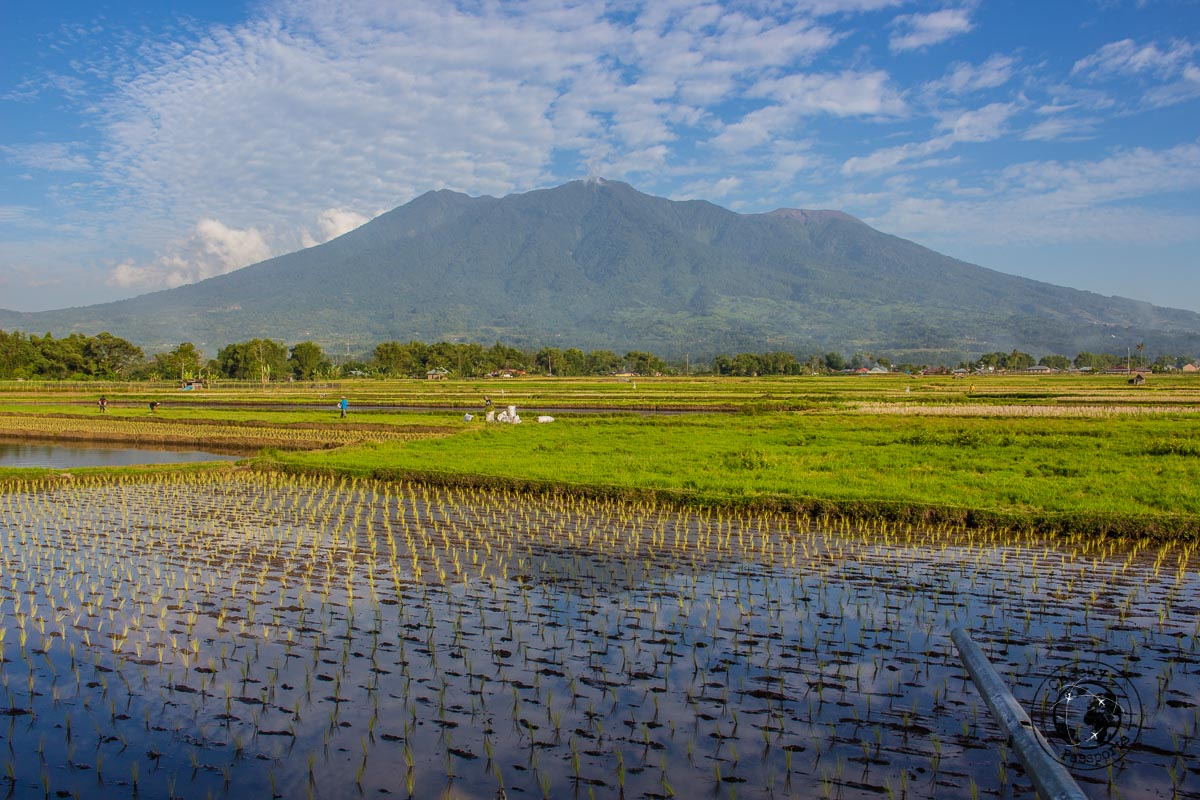 The countryside around Bukittinggi - A Mini Guide to Bukittinggi West Sumatra