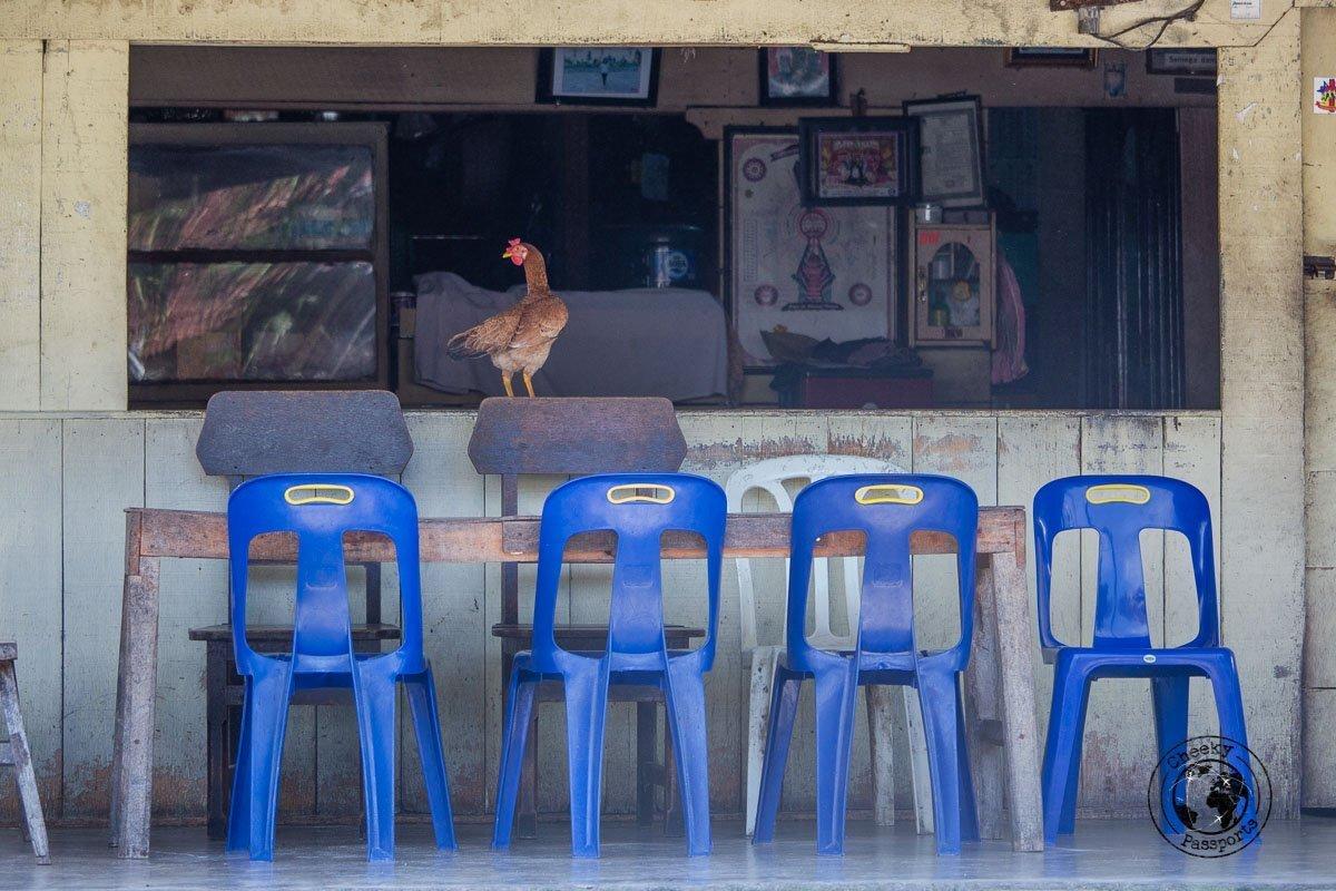 an interesting bar in Tuk Tuk Samosir