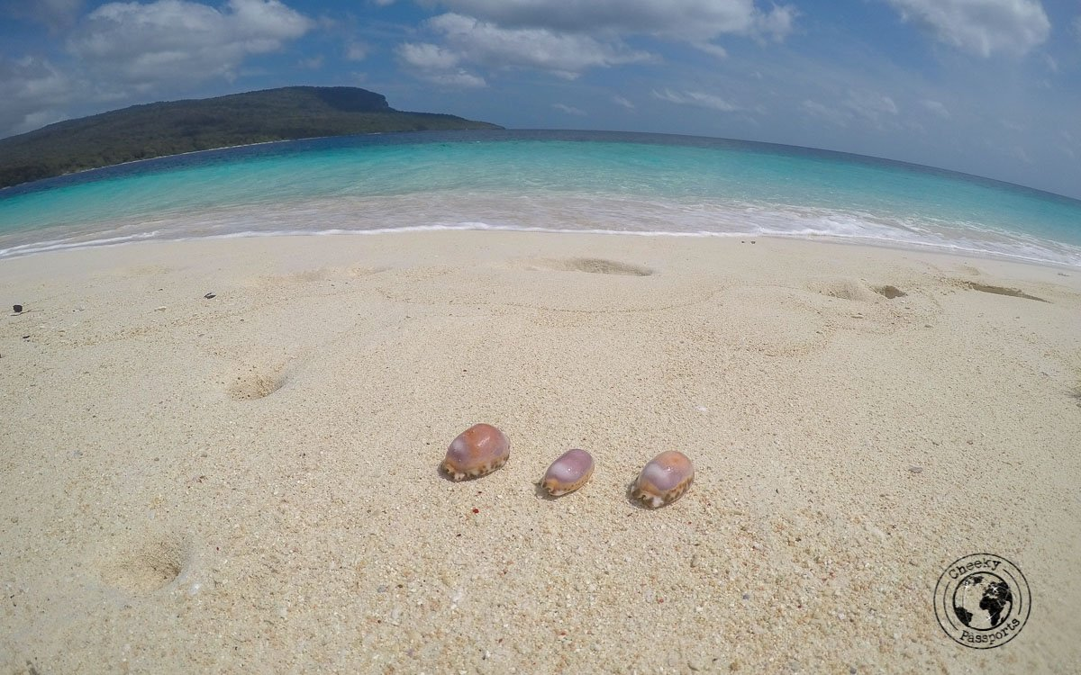 3 seas shells at Jaco island- How to get to Jaco Island in Timor-Leste – a guide - Travel expenses in Timor Leste