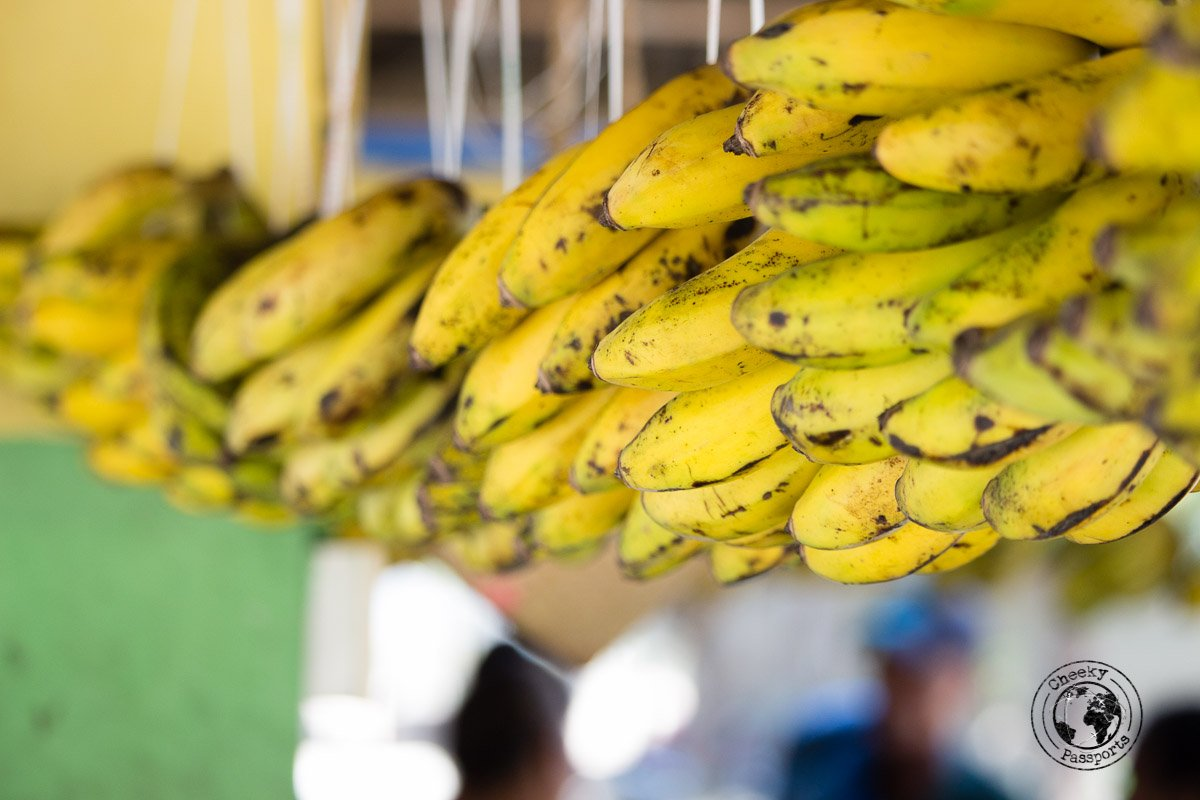 Bananas at the Promenade - Things to do in Dili, Timor Leste