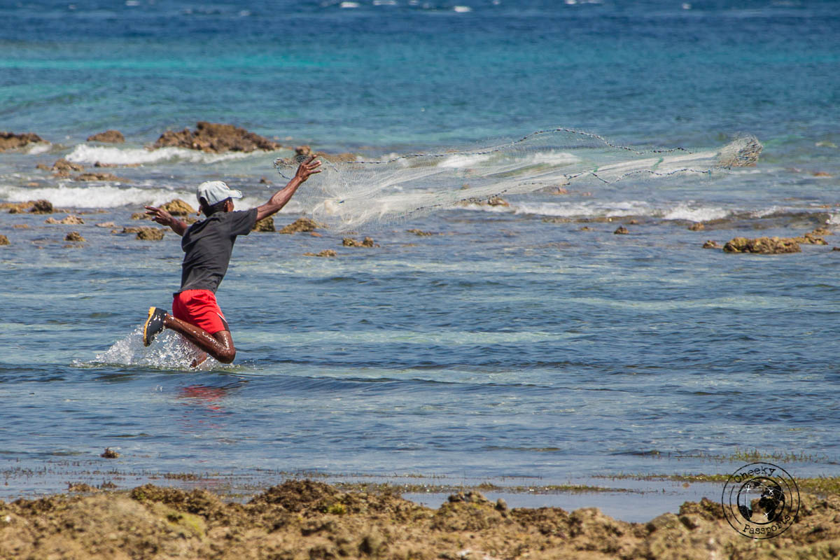 Fisherman casting his net - What to do in Dili, Timor Leste