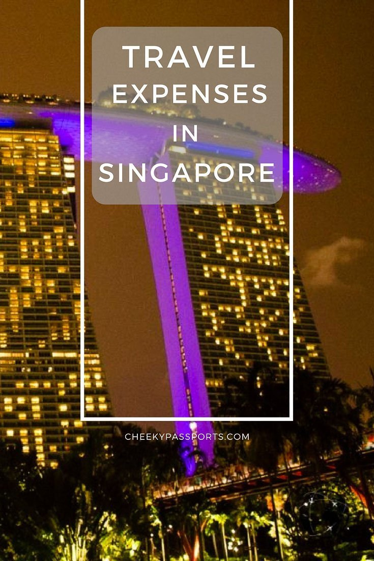 Because the travel expenses in Singapore can be daunting, visitors rarely stay for longer than a few days. Yet, although our travel expenses were higher than in neighbouring Malaysia or Indonesia, we managed well, without breaking the bank either! View a breakdown of our expenses here.