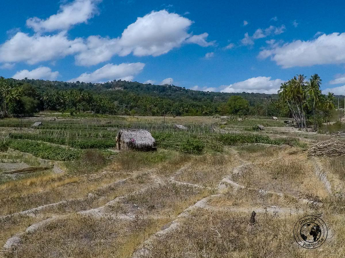 countryside scenary at Baucau - How to get to Jaco Island in Timor Leste – a guide