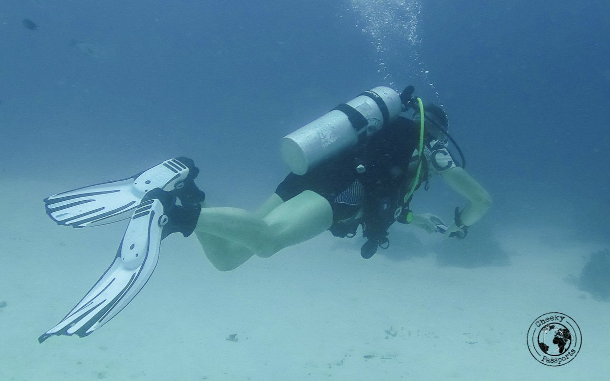 Diver - Diving with Diabetes