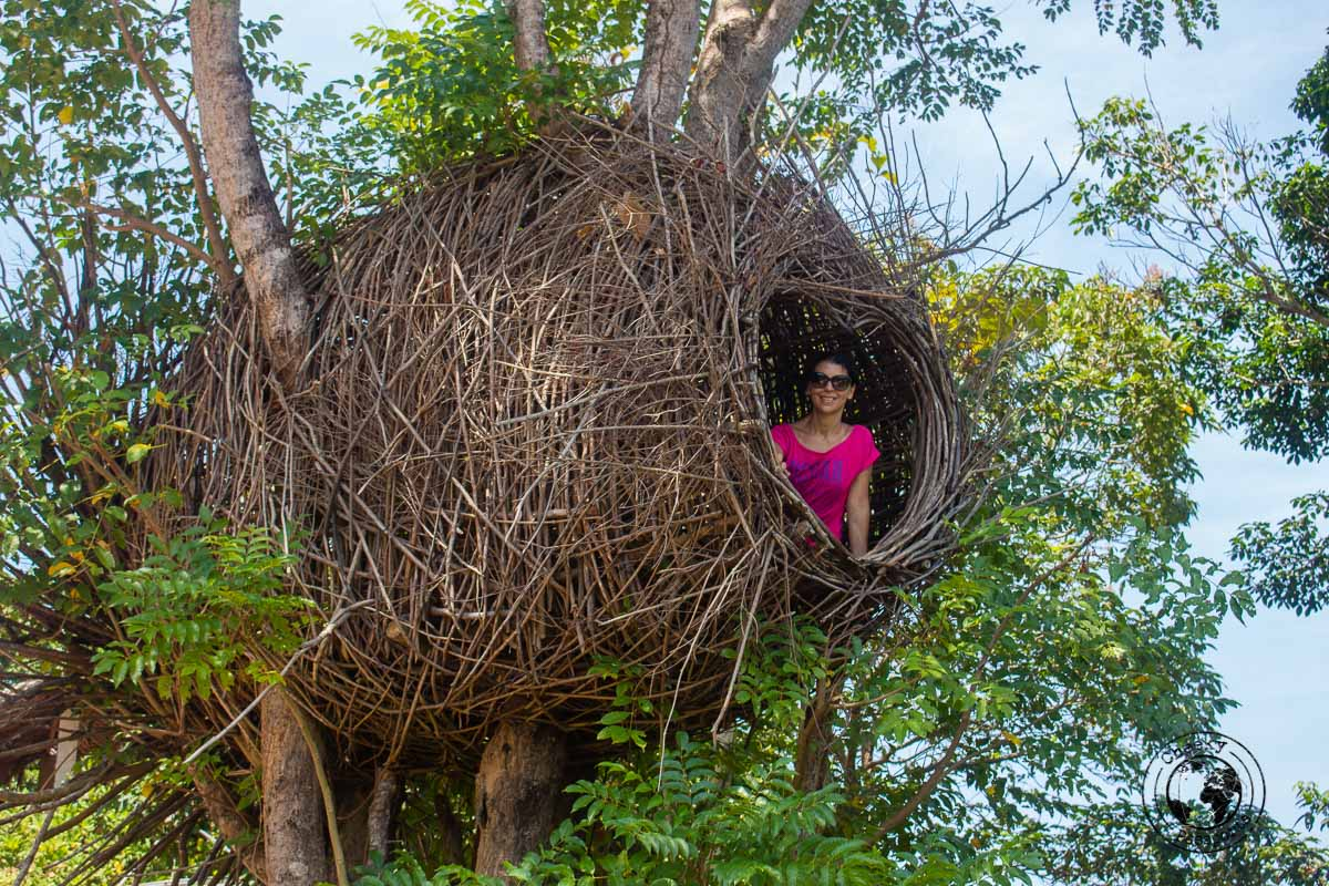 Michelle in a nest - Karimunjawa Islands Travel Guide and Information