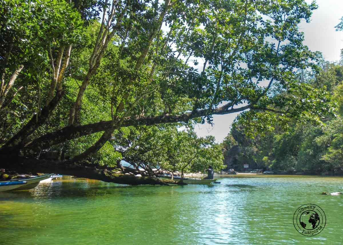 A mix of fresh and salty water at exit to the Puerto Princesa Underground River Tour Do It Yourself