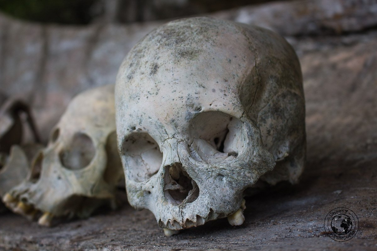 A skull quielty resting in peace on top of a cliff in Tana Toraja, Indonesia