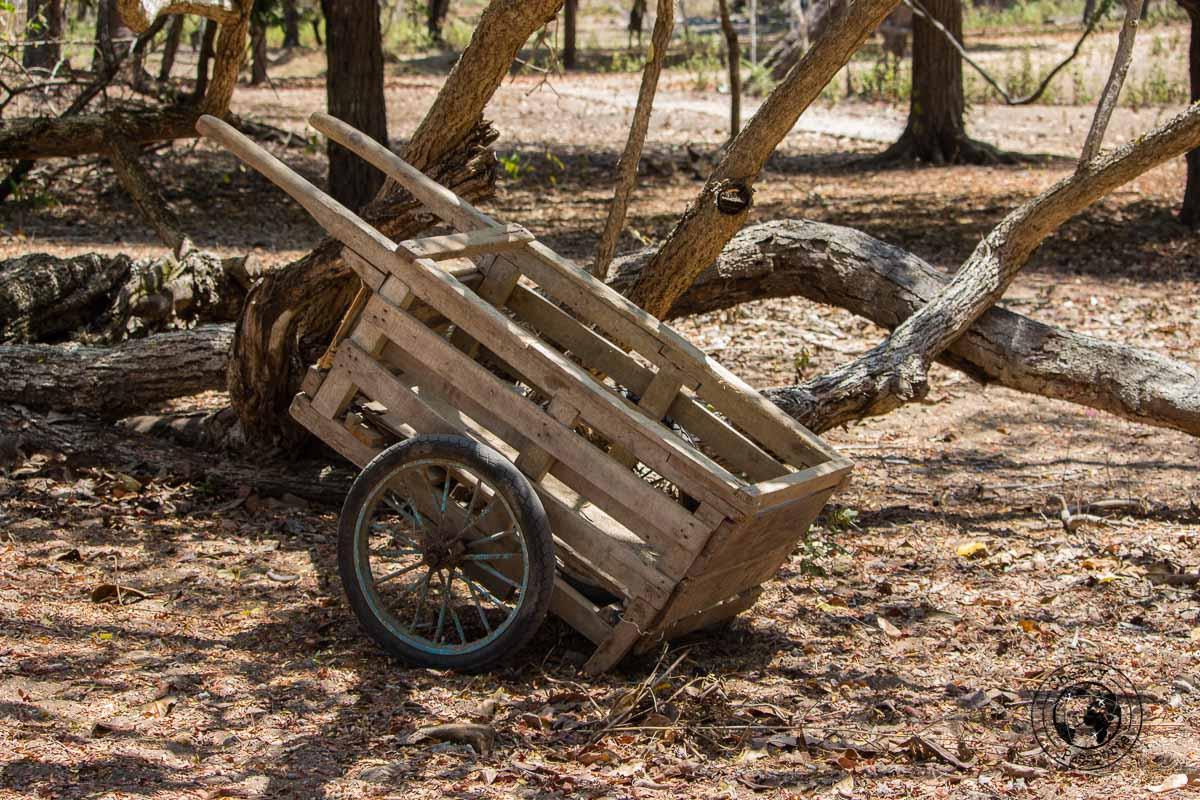 Cart at the Komodo National Park
