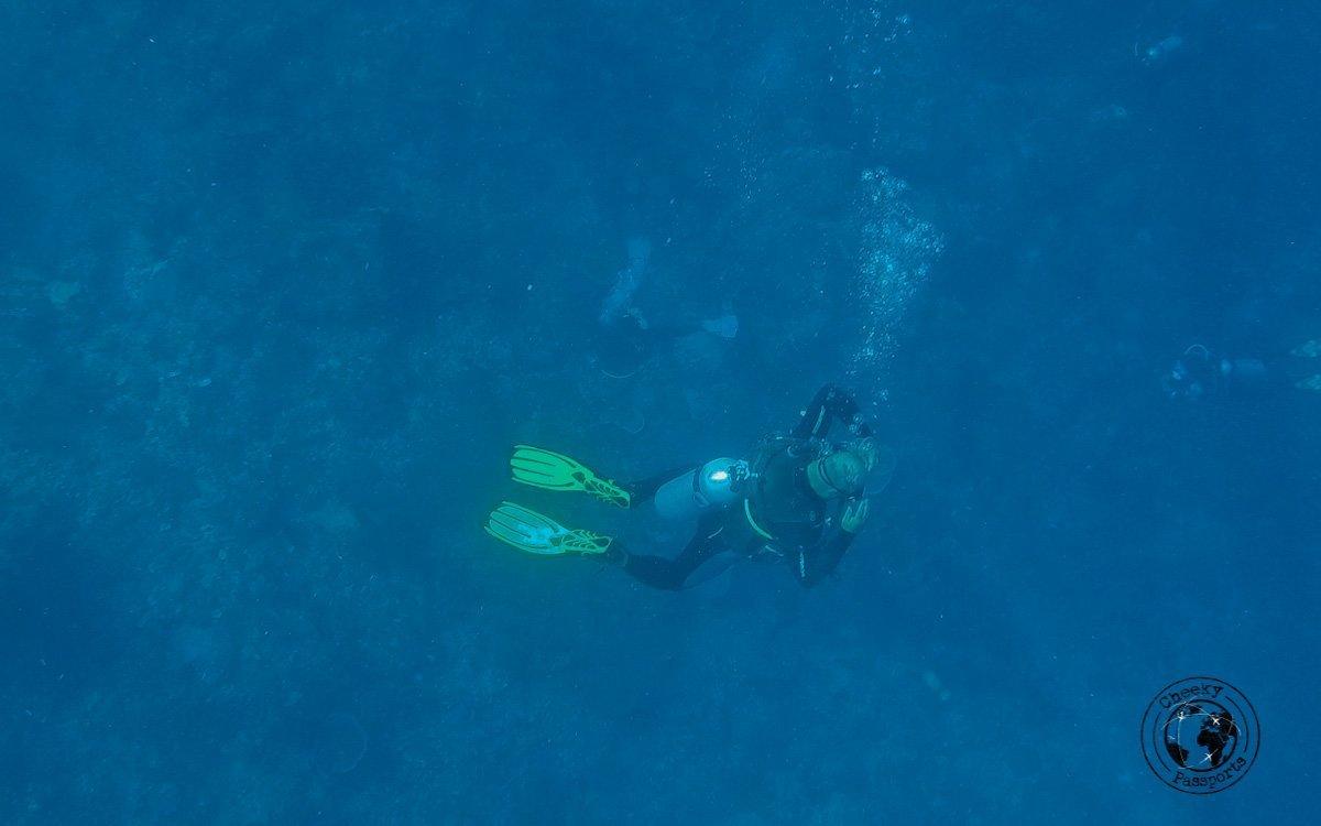 Nikki diving in Komodo National Park