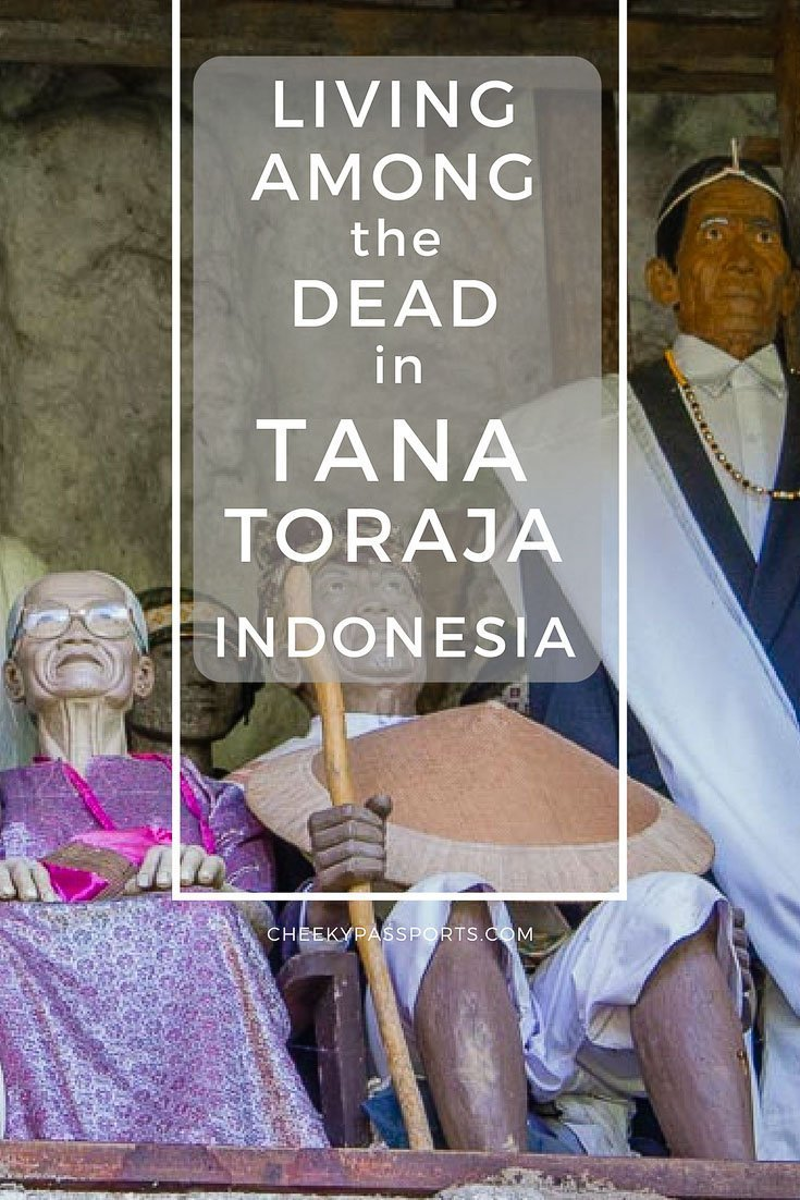 Understanding the death culture in Tana Toraja, Indonesia (South Sulawesi) is no easy task. Whilst funerary rites in the western world symbolise closure after death and a departure from this world, Torajans have a very different perception of death and its significance. We set out to explore this authentic land first hand! #travel #death #indonesia