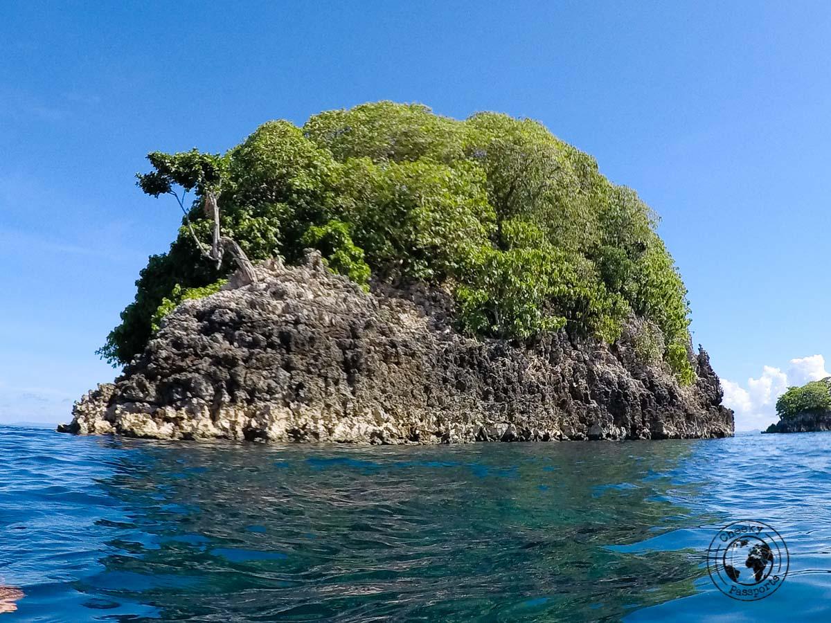 Melissa's Garden rock near Fam islands in Raja Ampat