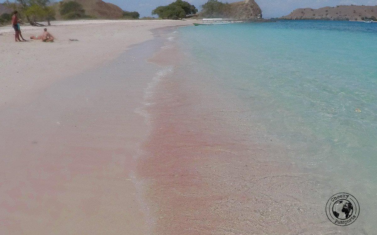 Pink beach, Komodo national park - traveling across Flores island Indonesia