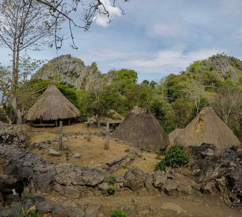 West Timor Travel, Indonesia – Indonesian Tribes and Sacrifices