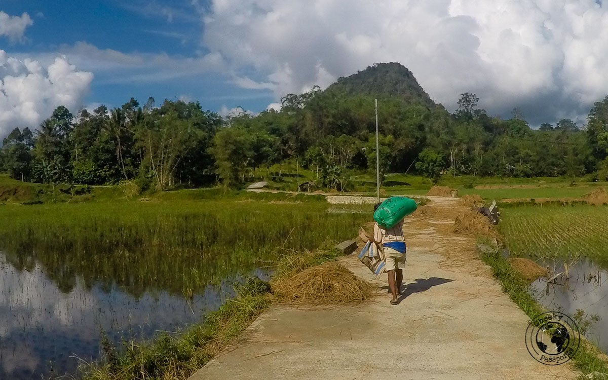 The countryside in Tana Toraja, Indonesia