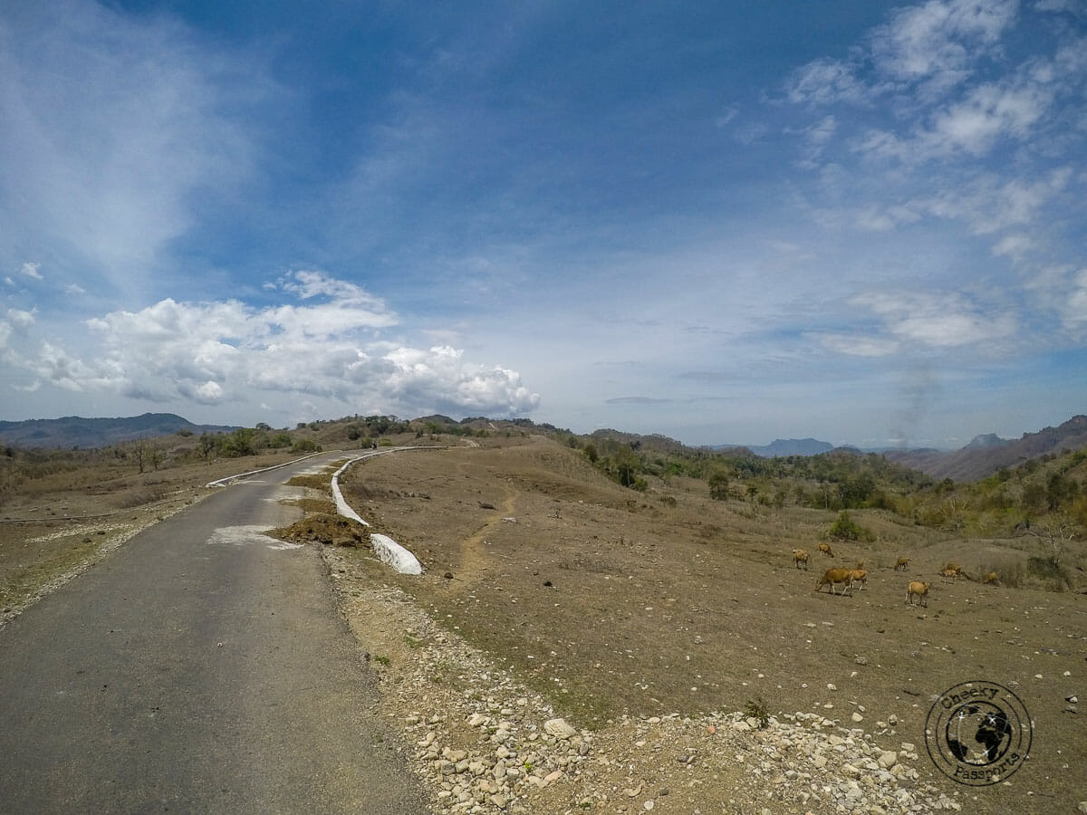 The roads leading to tamkesi village in west timor, whilst exploring Indonesian tribes