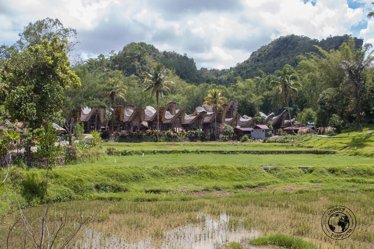 The touristic village of Katu Kese in Rantepao, Tana Toraja, Indonesia