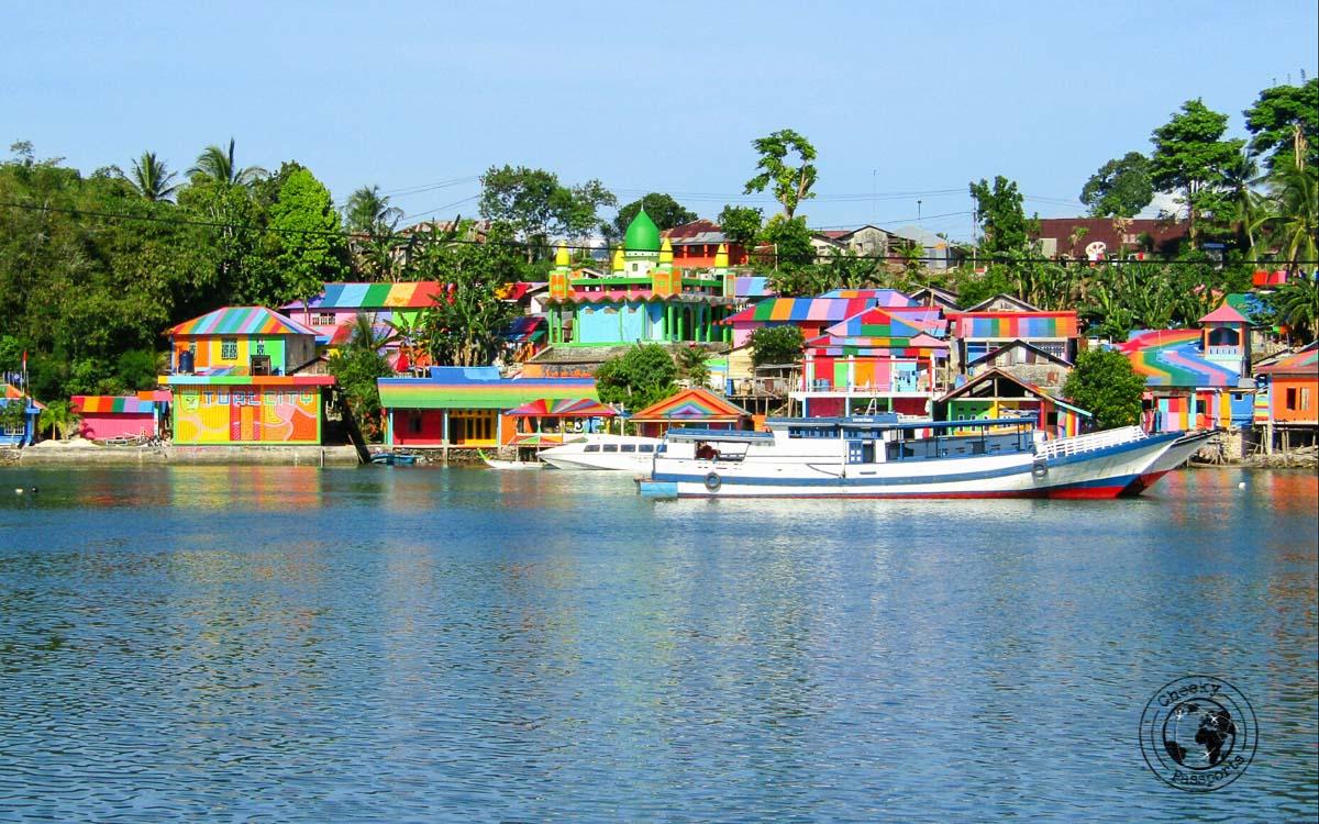 A Colourful Tual-langgur border in Kei kecil