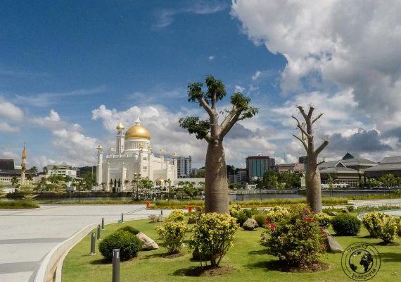 The garden around Sultan Omar Ali Saifuddin Mosque - Things to do in Brunei