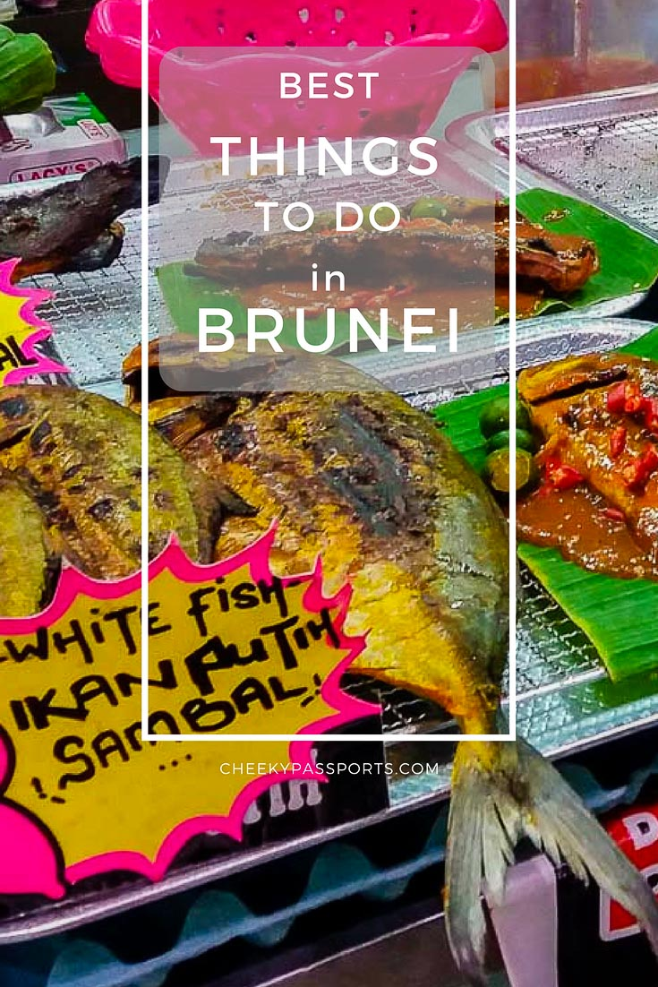 Things to do in Brunei - The little Sultanate of Brunei is seldom considered as a travel destination because, quite frankly, there aren't a whole lot of things to do in Brunei. We gladly discovered that although there is no need to spend much time in the country, there were enough activities to keep us occupied for a couple of days. #brunei #budgettravel #touristattractions
